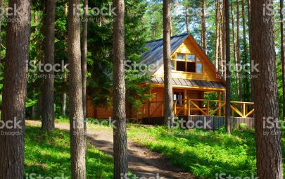 Проект дома из бревна № 4